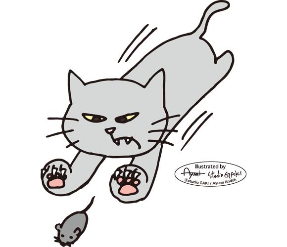 150217_hunting_cat