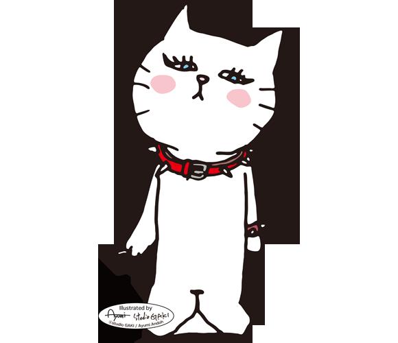 150319_cat